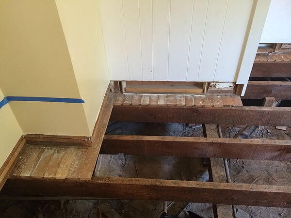 Professional Service Remove Urine Odor From Wood Floors