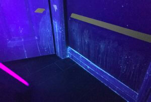 Cat Spray Stains Illuminated Under UV Black light