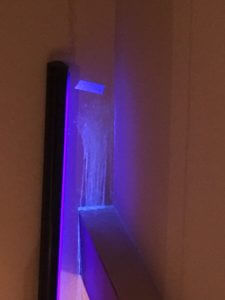 House Odor Elimination Services looking for cat urine with uv black light