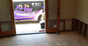Pet Odor Removal Service Los Angeles Treating Cat Urine Damage In a House