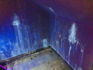 Odor Detection Service Illuminating Cat Urine On Drywall