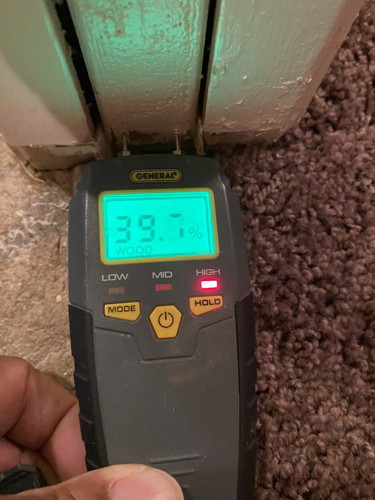 Forensic Home Inspection Urine Odor Detection Service Tools